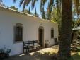 Wohnen im Holiday House Casa Velha São Brás de Alportel Algarve Portugal landschaft natur palmen